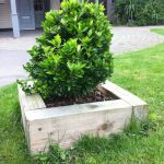New ECO pine railway sleeper size for mini raised beds