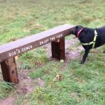 Heartless theft of railway sleeper bench