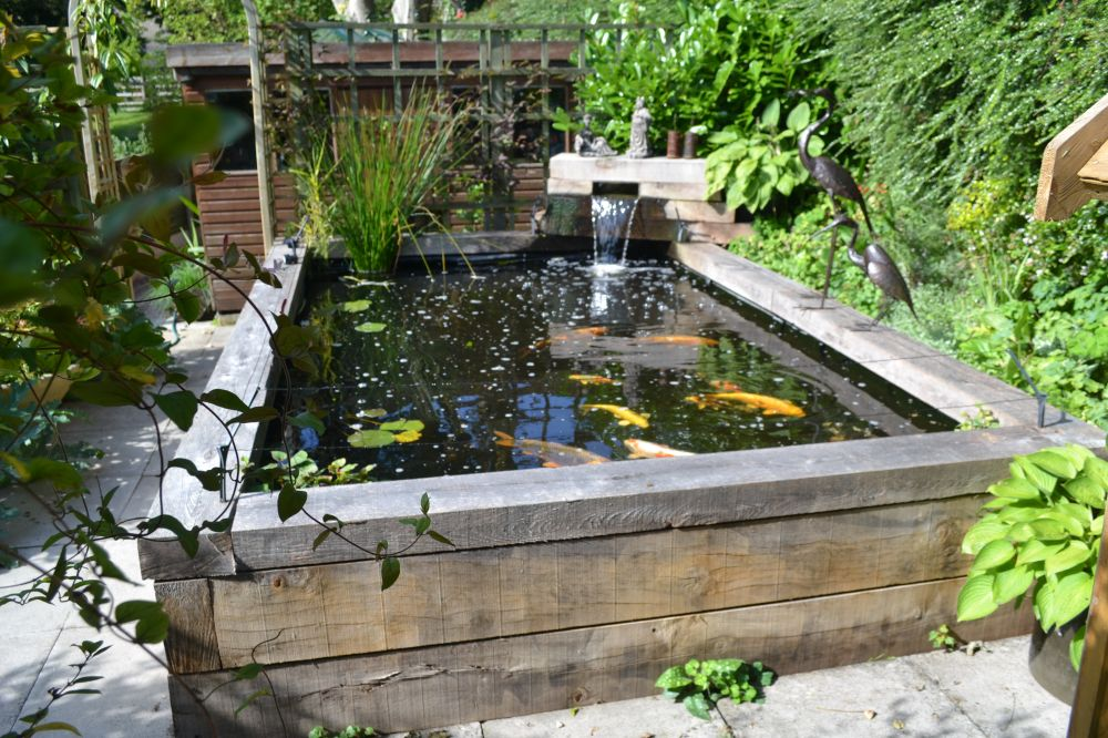 Koi carp pond with railway sleepers for Fish pond decorations