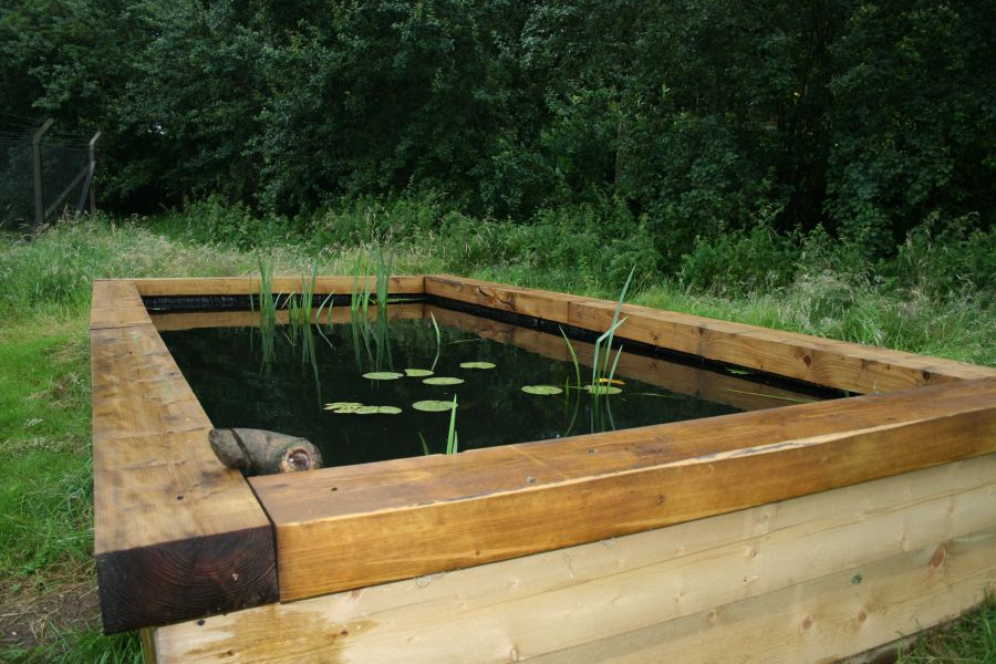 Anglian water 39 s raised pond with railway sleepers for Garden pond raised