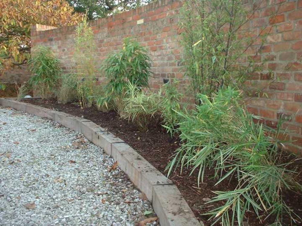 Garden Borders Using Sleepers : Bamboo raised bed from railway sleepers