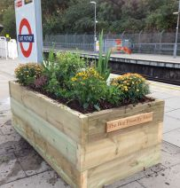 Bee friendly Putney Station's railway sleeper raised beds
