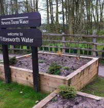 Tittesworth Water raised beds with new pine railway sleepers
