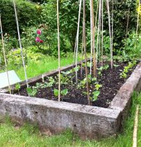John & Margaret's vegetable beds with used Azobe railway sleepers