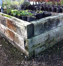 DW Frost Nurseries classic used railway sleeper raised beds