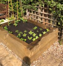 Jane's raised vegetable bed with new pine railway sleepers