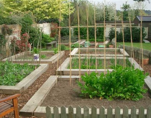 John Incle's vegetable beds with railway sleepers