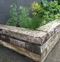 Norfolk Lavender's raised bed with old railway sleepers