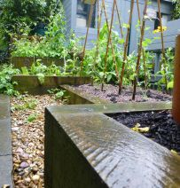 Nottingham Open Gardens railway sleepers 2015