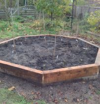 Colin's Octagonal raised bed with new railway sleepers