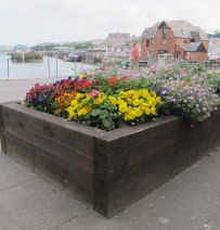 Padstow raised bed with railway sleepers