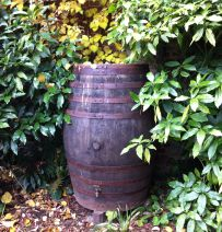 Peckover House, Wisbech, landscaping with Barrels