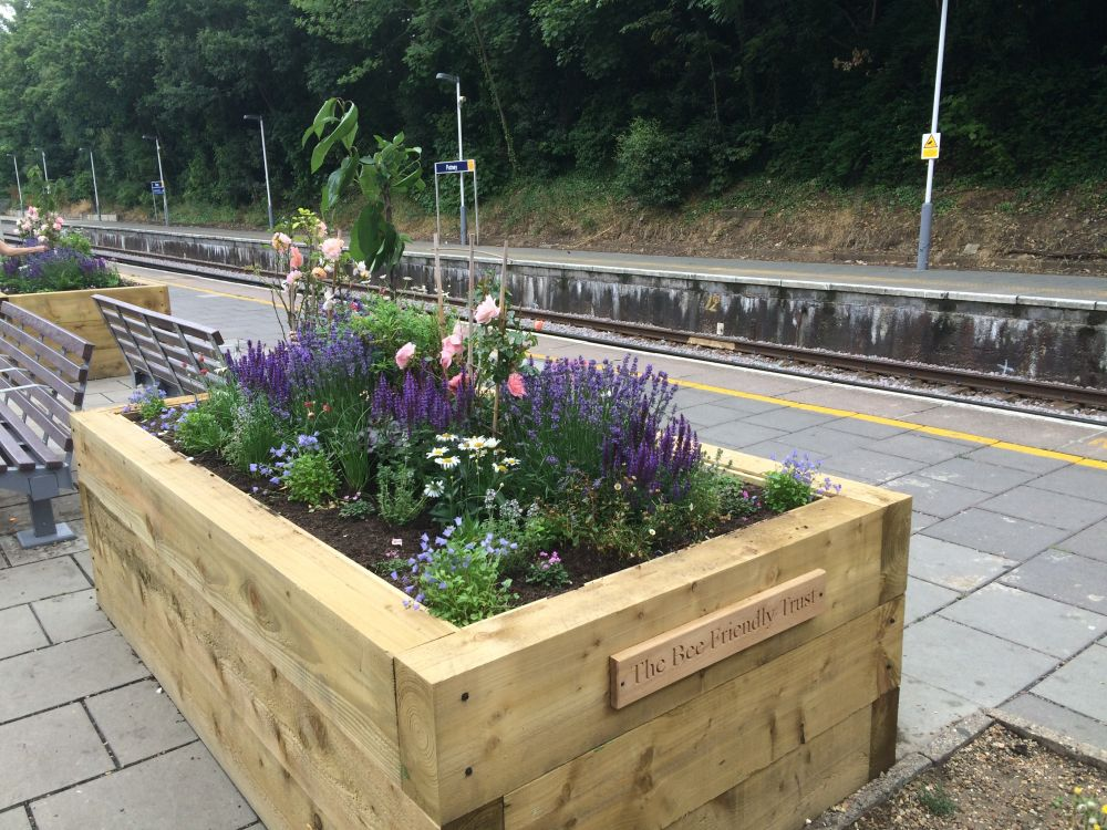 Putney station railway sleeper raised beds