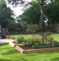 From 'circle of bare soil' to railway sleeper raised beds