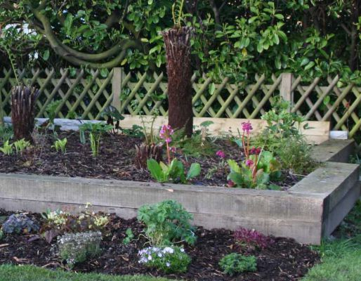 Tim Radley's raised beds with railway sleepers