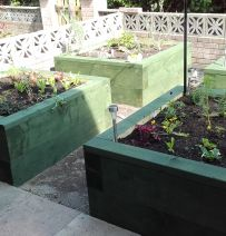 Sue Shaw's four raised beds