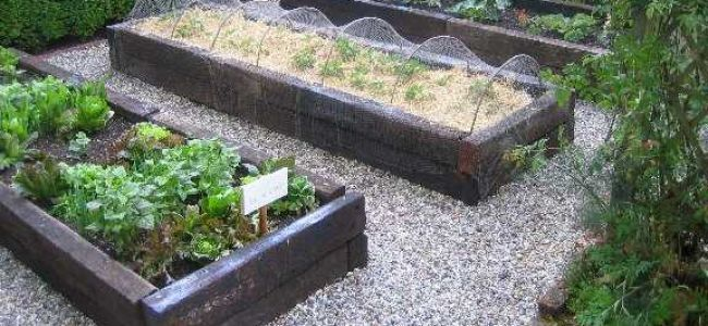 raised beds with railway sleepers - Garden Design Using Sleepers